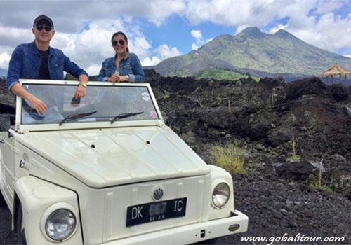 VW Safari Tour